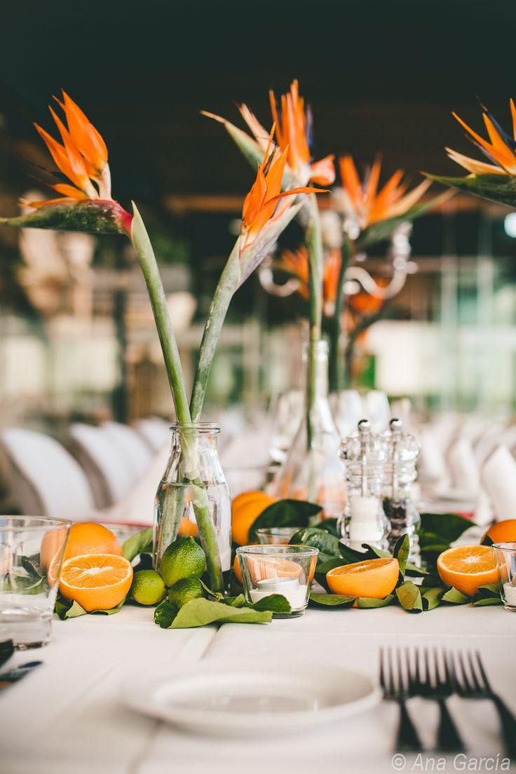Orangen und Strelizien