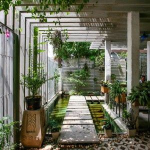 Studio+102+converts+an+empty+Hanoi+house+into+a+plant-covered+office+and+showroom