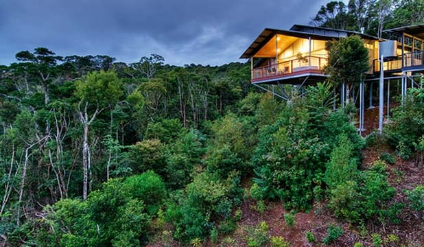 O'Reilly's Rainforest Retreat, World Heritage-listed Lamington National Park, Australia