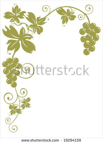 Vine leaves and golden bunches of grapes over white background. Autumn and harvest concept. With clipping path.