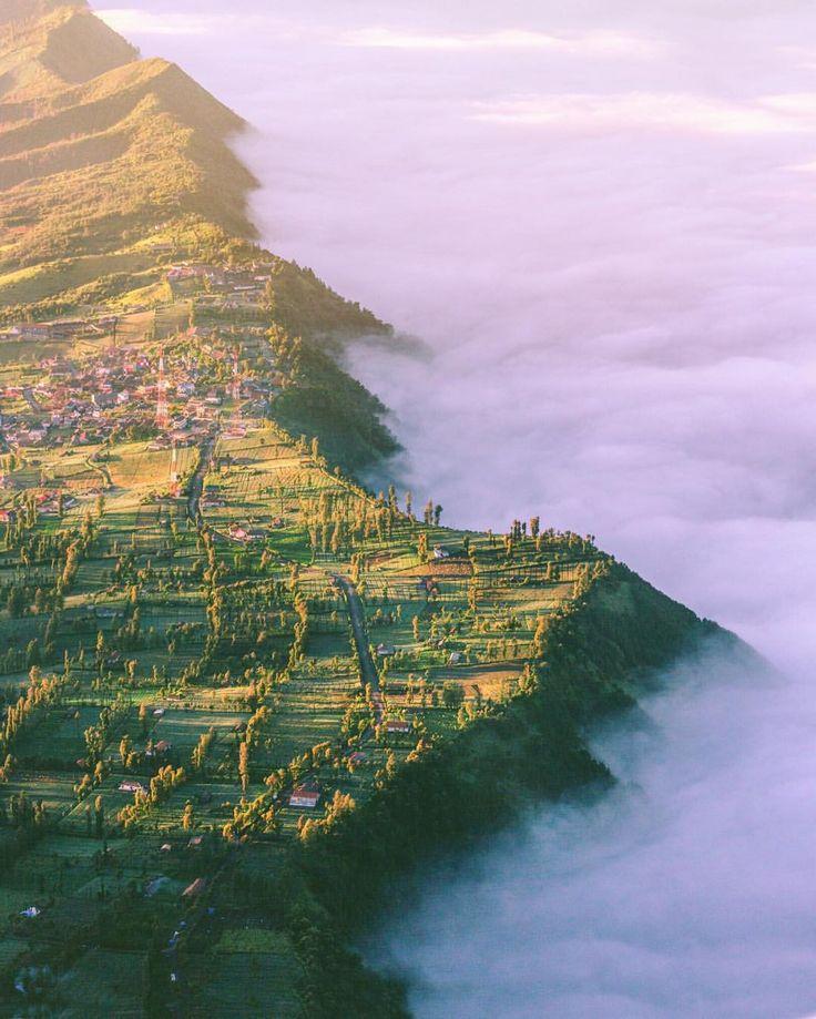 Rhine River Castles Castle, Rhine river, My dream home