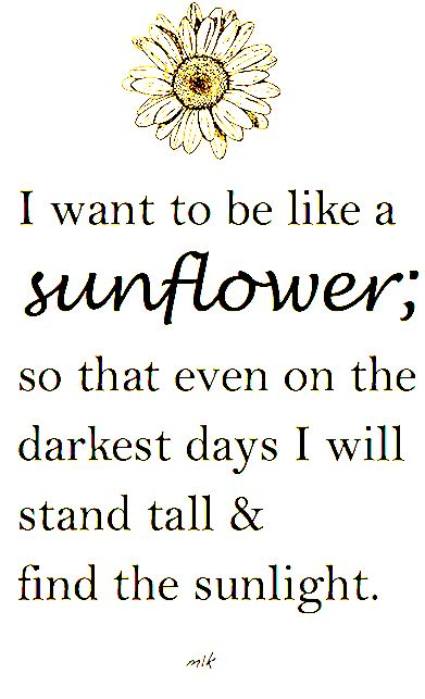 I want to be like a sunflower; so that even on the darkest days I will stand tall and find the sunlight. - M.K.