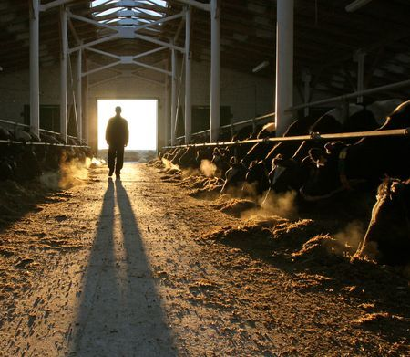 Farmer in the barn Photo by Vladimir Cheberkus — National Geographic Your Shot