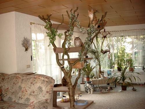 15 pins zu naturkratzbaum die man gesehen haben muss katzenregale katzenfutterautomat und. Black Bedroom Furniture Sets. Home Design Ideas