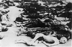 Buchenwald concentration camp - Wikipedia, Bodies of Buchenwald Prisoners  April 1945