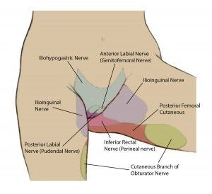 Newer Pain Management Treatments for Pelvic Pain: Nerve Blocks (Superior Hypogastric, Ganglion Impar, Peripheral), Radiofrequency Ablation, Cryoablation, Chemodenervation, Epidural Steroid Injection, IV Infusion Therapy, Spinal Cord Stimulation (with unique leads), Intrathecal Pumps (with new drug Ziconotide).