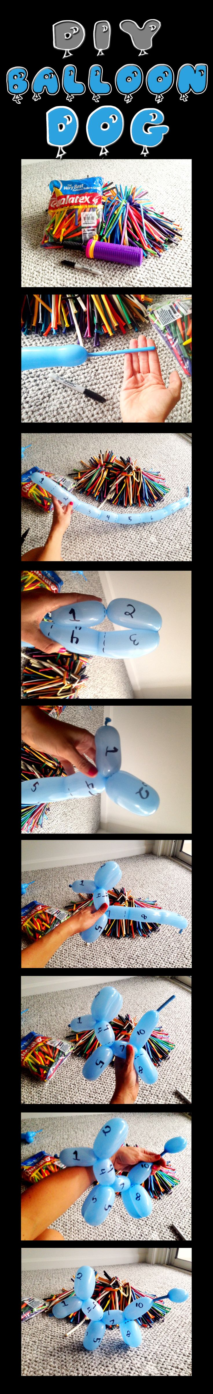 How to make a balloon animal dog! Follow my simple step by step DIY tutorial and create your own squeaky puppy pal.