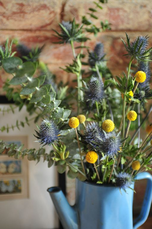 Thistle Flowers, Blue flowers, craspedia, billy balls, billy buttons, wollyheads, eucalyptus, vintage blue metal coffee pot, exposed, brick wall, butterfly print