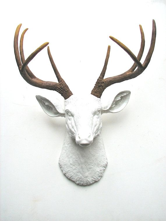 Stag Head Wall Decoration Small Home Remodel Ideas Lovely - Lovely ...