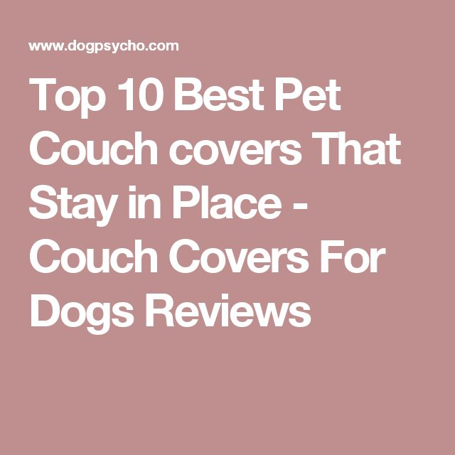 Top 10 Best Pet Couch covers That Stay in Place - Couch Covers For Dogs Reviews