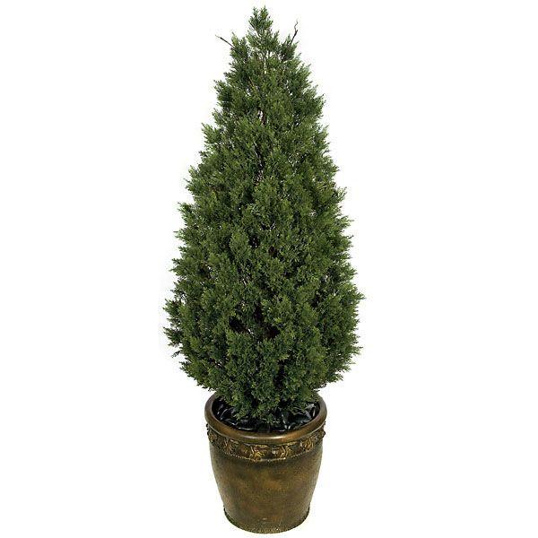 how to keep cedar looking natural