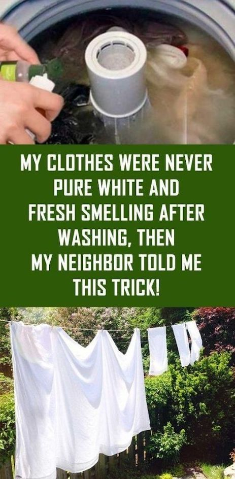My Clothes Were Never Pure White and Fresh Smellin…