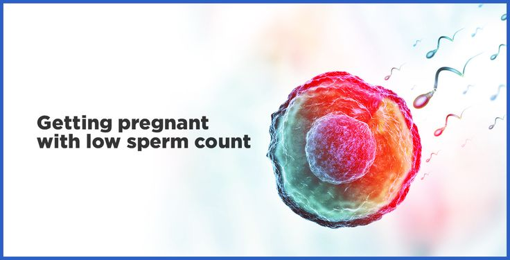 Low getting pregnant motility with sperm