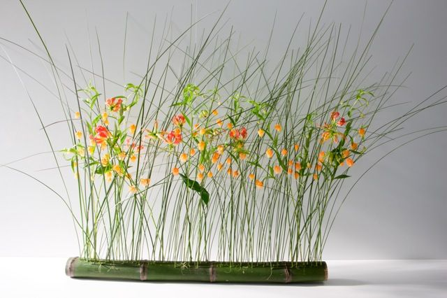Beautiful works by Internationally acclaimed German Master Florist Brigitte Heinrichs! Join us next March 18-22 in the Occasion! Building at the San Francisco Flower & Garden Show, where Brigitte will give a lecture demonstration and 2, 2day workshops! Details: OccasionCarmel.com