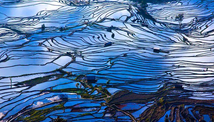 terraced-rice-fields-16__880