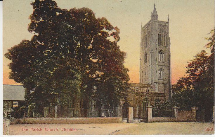 Knight Collection Postcard - The Parish Church, Cheddar 58/9 | PC02093