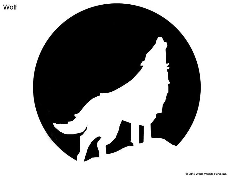 Best 25 wolf stencil ideas on pinterest wolf silhouette for Pumpkin carving silhouettes
