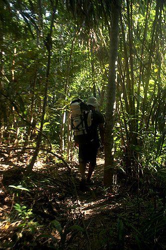 A caminhada pela região amazônica de Boa Vista, em direção à Serra Grande, é um dos pontos máximos da visita à capital de Roraima, no norte do Brasil MAIS Eduardo Vessoni/UOL