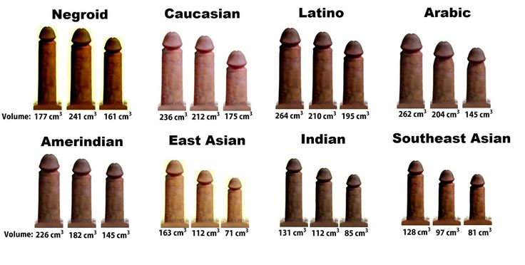 Average Asian Dick Size 62