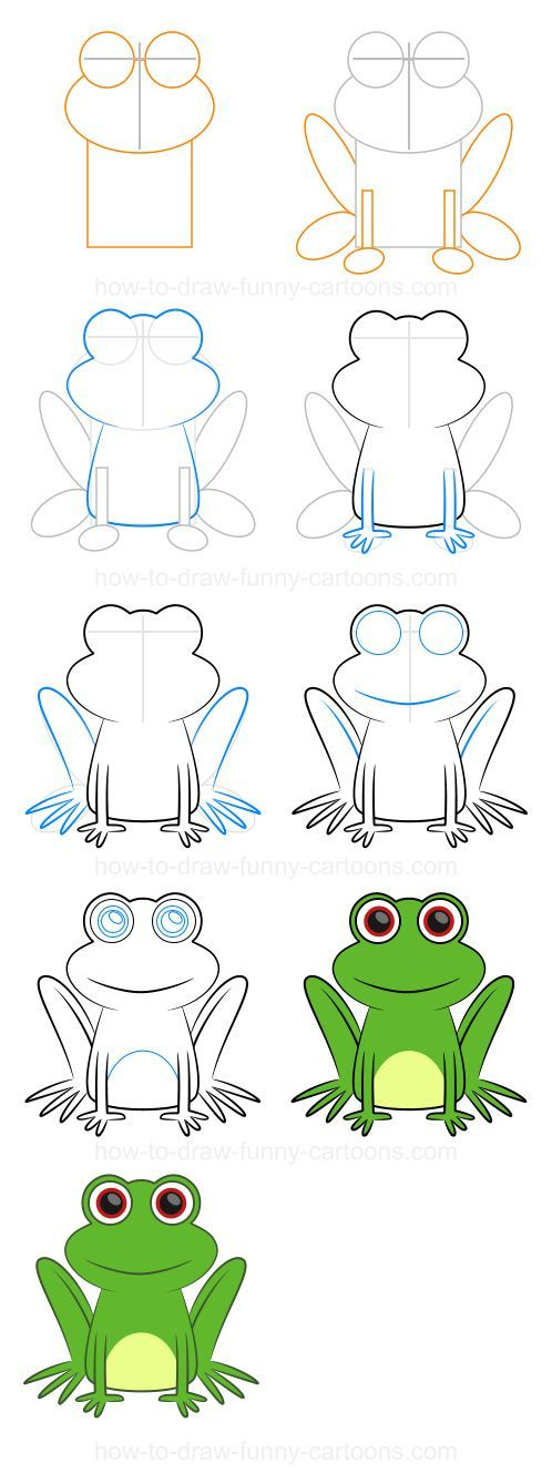How to draw a frog (Step-by-step):