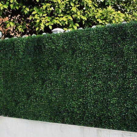 25 unique fence screening ideas on pinterest garden for Buy outdoor privacy screen