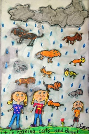 French Idiom Raining Cats And Dogs