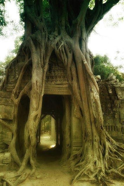 Cambodia ancient architecture