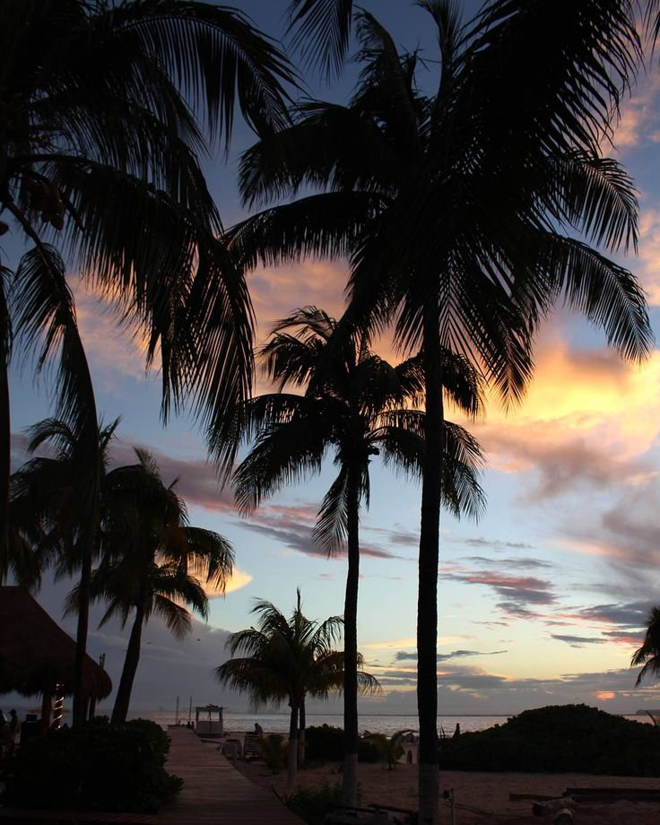 Dawn#небо #beauty#beautiful #nature #igers #vsco #vscocam #followme #girl #traveling #traveler #sky #ilovetravel #caribean #caribeansea #cancun #mexico #Summer #greatdecember #beach #warmwater #paradise #vacation #whitesand #dawn #закат #канкун #мексика #islamujeres  #исламухерес by alinkahgr