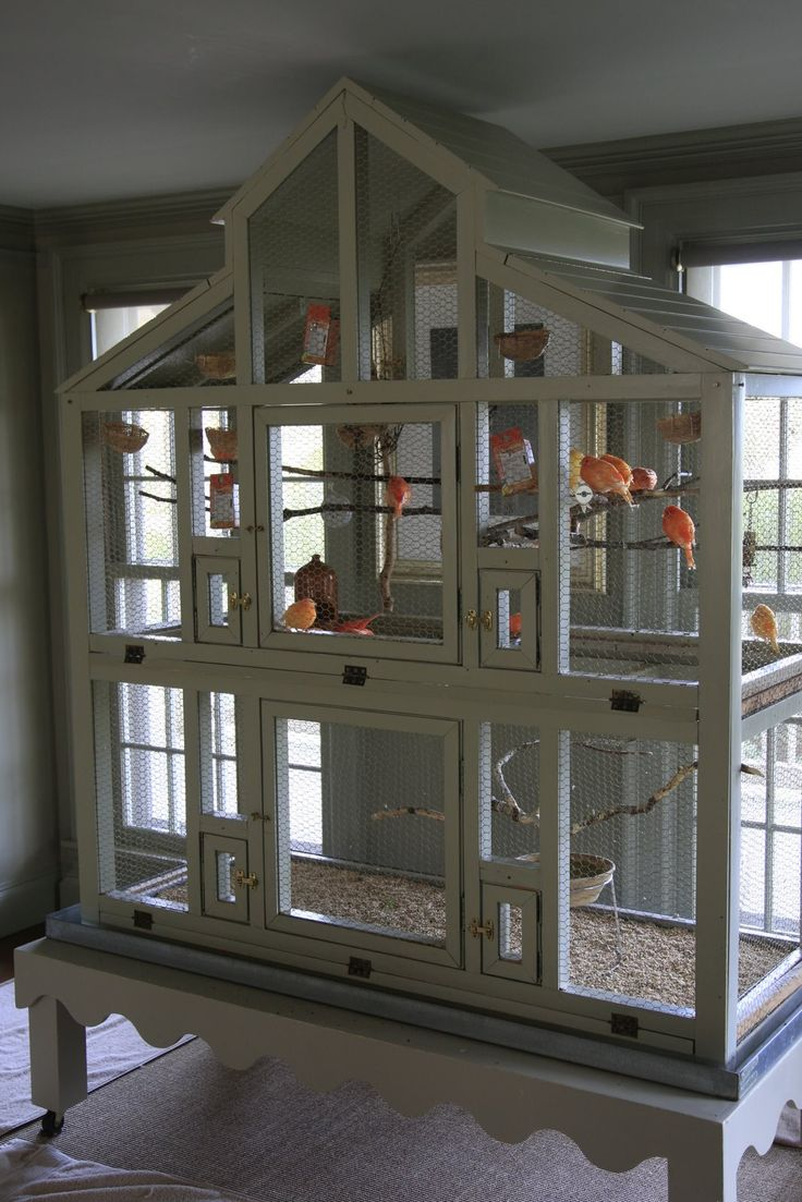 24 Best Images About Cabinet Bird Cages On Pinterest