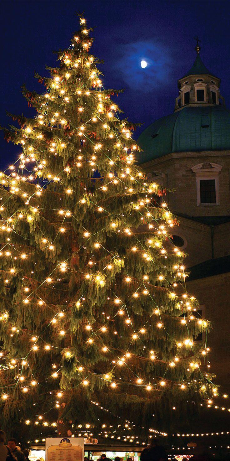 Christmas tree under the night sky in Salzburg, Austria.