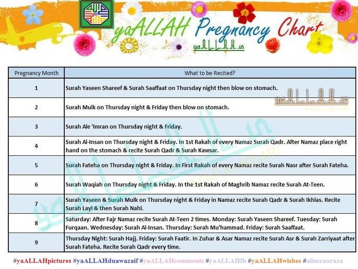 Islamic Women Monthly Pregnancy Chart With Diet