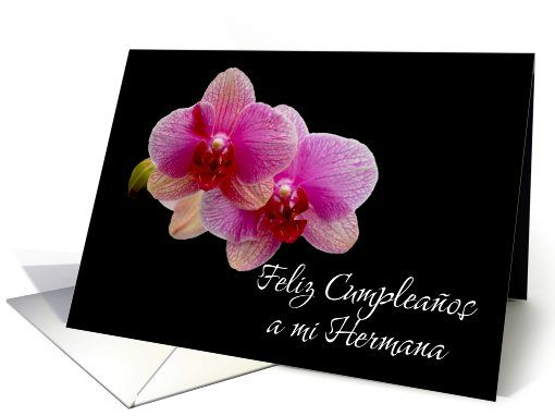 Birthday card for sister with pink orchids. Spanish language. Feliz cumpleanos hermana
