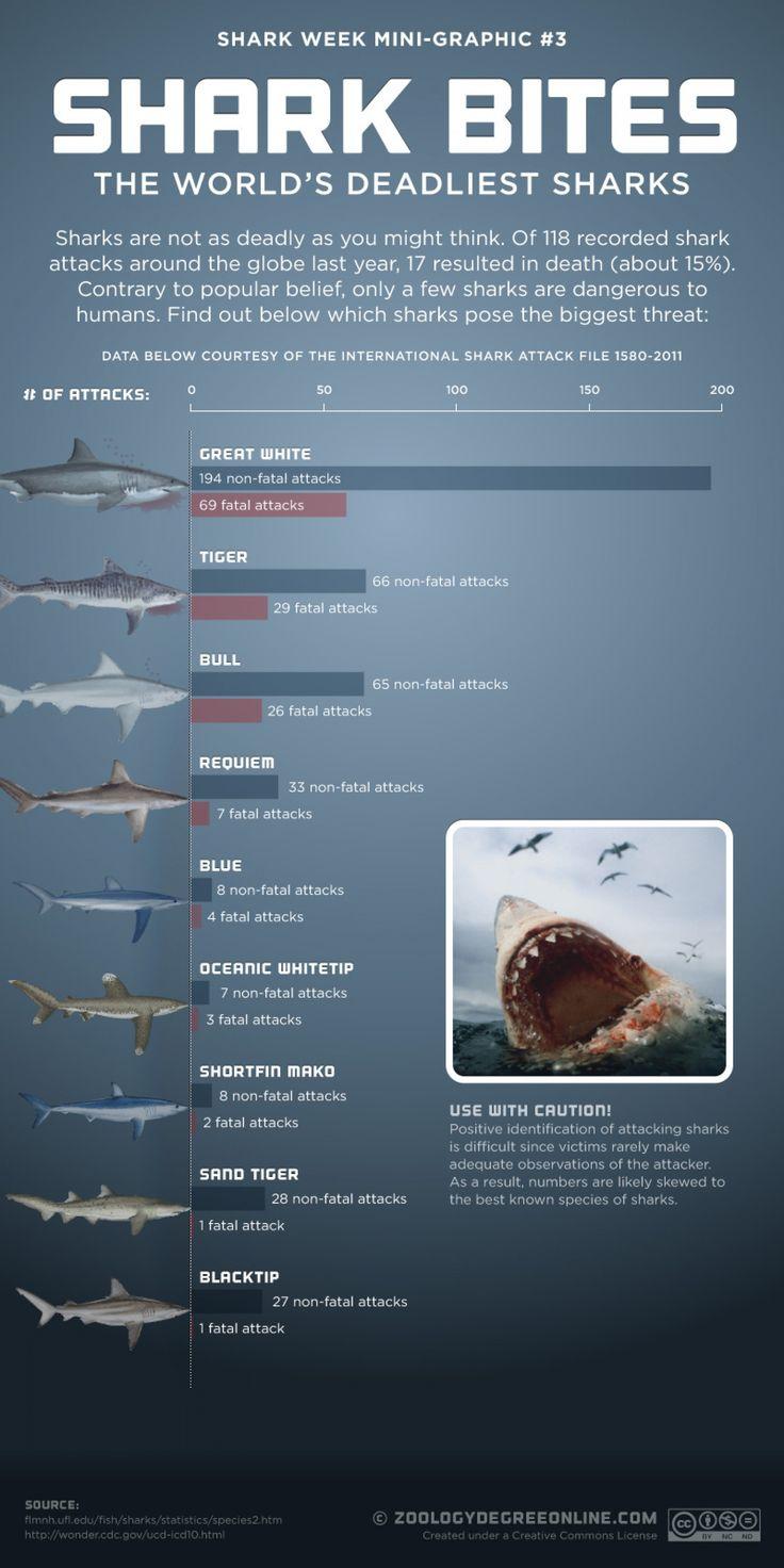 Shark Bites - The World's Deadliest Sharks Nice info! :D # ...