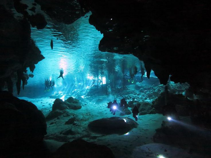 scuba+diving+caves | ... Cave Diving Trips to Cenotes of Yucatan Mexico | Cozumel Scuba Diving