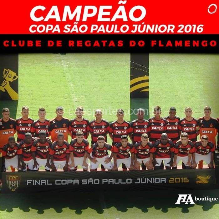 flamengo campeao copa sao paulo 2016 - Pesquisa Google