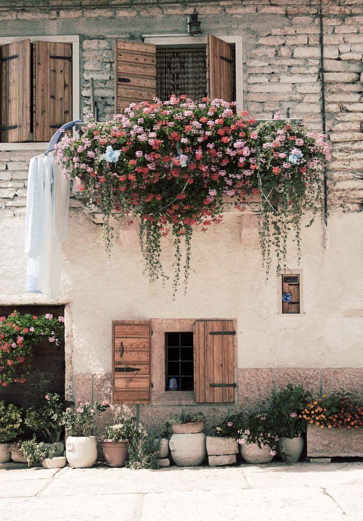 Overflowing window flower box.