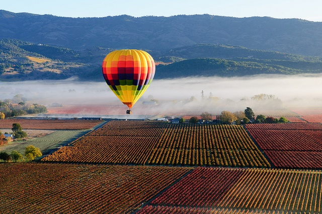 Hot air balloon in Napa Valley Places Pinterest