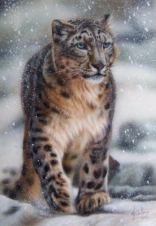Christina Schulte Fine Artist - Snow Leopard 8 x 12 inch / 21 x30 cm, oil on canvas.