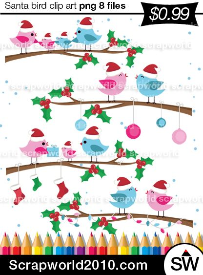 Amazing Christmas bird clipart Winter Bird for christmas card,pink and blue color.Best quality vector drawn. Size of about 5 inches. 8 files no backgroubd snd jpg instant download to e-mail