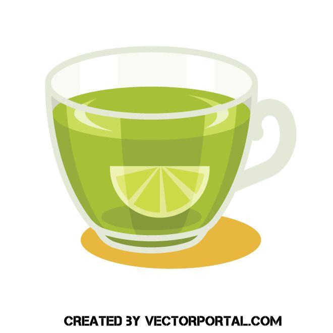 lemon green tea free vector image green tea cups tea illustration green tea lemon green tea free vector image