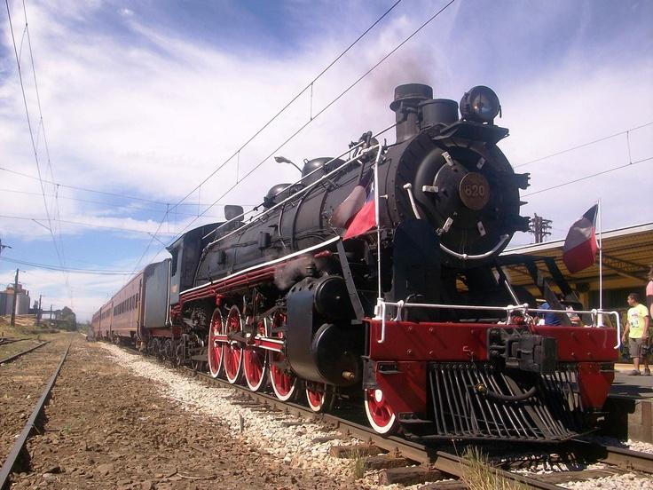 Tren Araucanía que recorre tramo Victoria-Temuco. Foto de Pablo Álvarez.