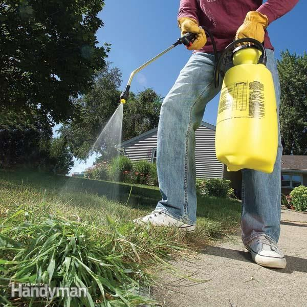 Crabgrass is a tough opponent, but with a lawn spreader, a pump sprayer and a few turf products you can get rid of crabgrass in the spring