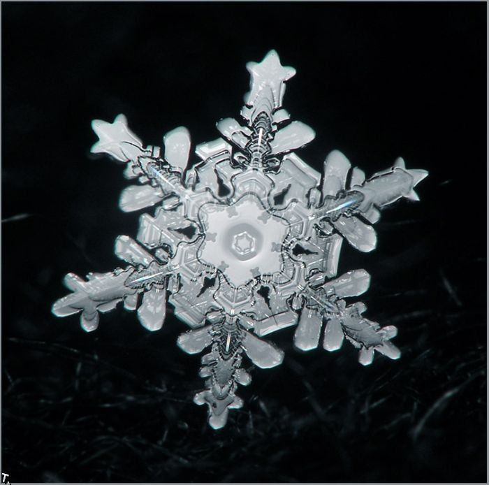 Every snowflake, like every soul, is made of the same substance and yet, is unique.