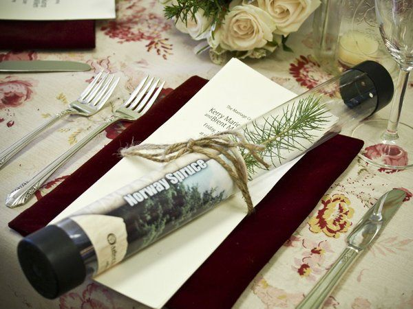 Gifts For Wedding Guests Ideas: 49 Best Images About Arbor Day Ideas On Pinterest