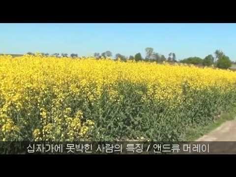 십자가에 못박힌 사람의 특징 / 앤드류 머레이 - YouTube