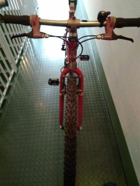 Raleight Mountainbike.26 zoll in Berlin - Hohenschönhausen | Herrenfahrrad gebraucht kaufen | eBay Kleinanzeigen