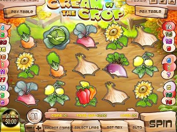 7 Tips How Can To Win Cash Money Instantly Playing Cream Of The Crop Casino Slots In Reviews Of The Cream Of The Crop Internet Casino Slot Game