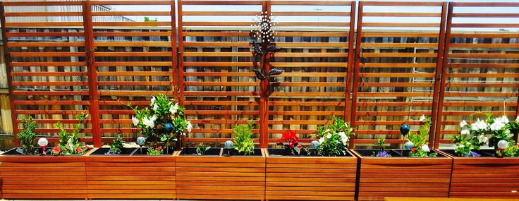 Create a back-yard border where there is just a boring fence like we did with these Deckhaus Timber Planters from Freedom Furniture AUSTRALIA!  When our climbers and screeners grow we will have extra privacy as well as a prettier garden!