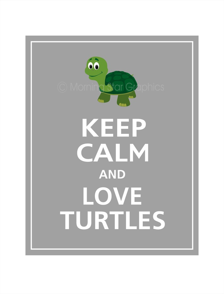 Keep Calm and LOVE TURTLES Print 8x10 (Dolphin Grey featured -- 56 colors to choose from). $10.95, via Etsy.