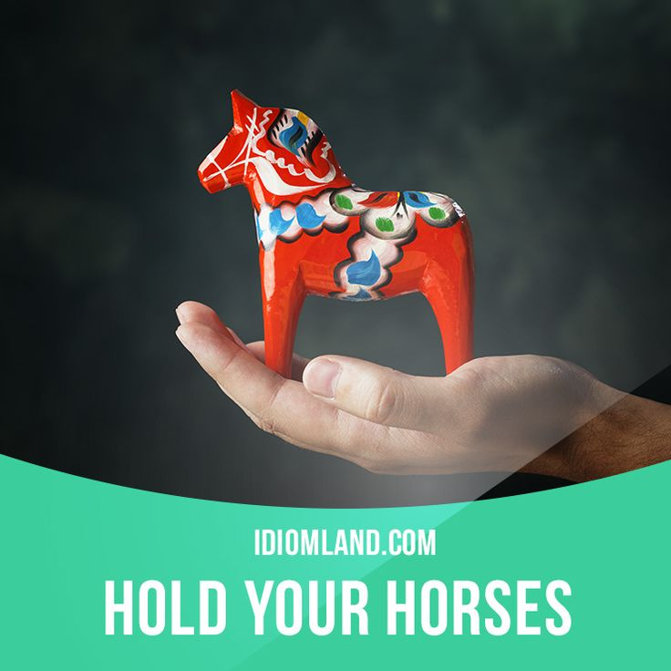 """Hold your horses"" means ""slow down, wait"". Example: Hold your horses! Grab an…"
